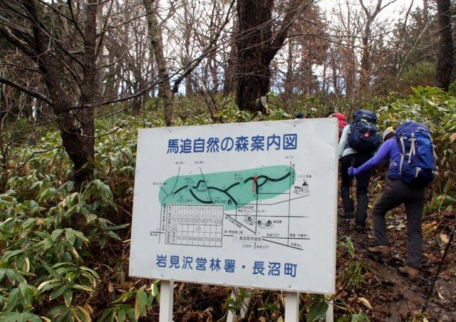 2017年11月12日(日) 瀞台(しずかだい)(標高272.8m)_a0345007_1148524.jpg