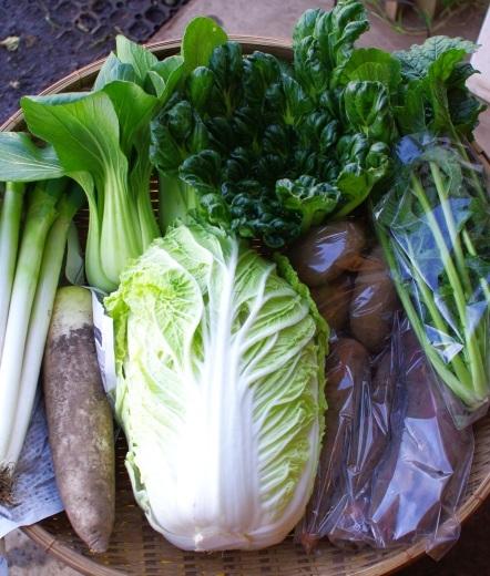 今週の野菜セット(11/14~11/18着)_c0110869_11315537.jpg