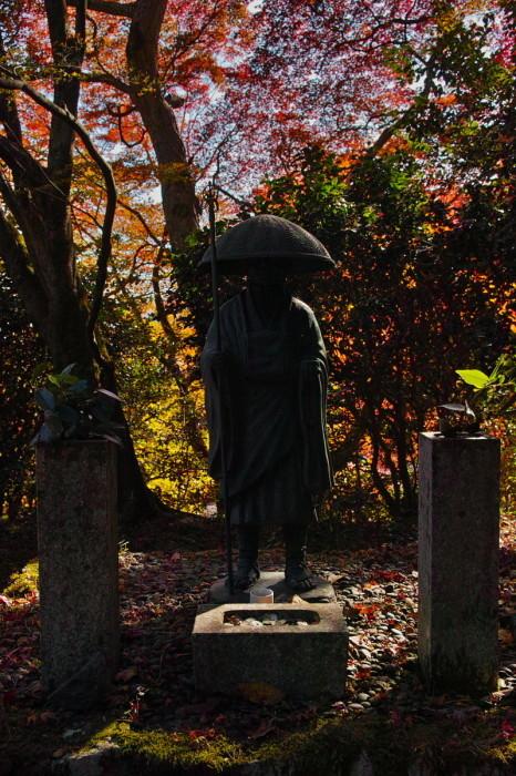 紅葉  2017   金蔵寺_f0021869_13393999.jpg