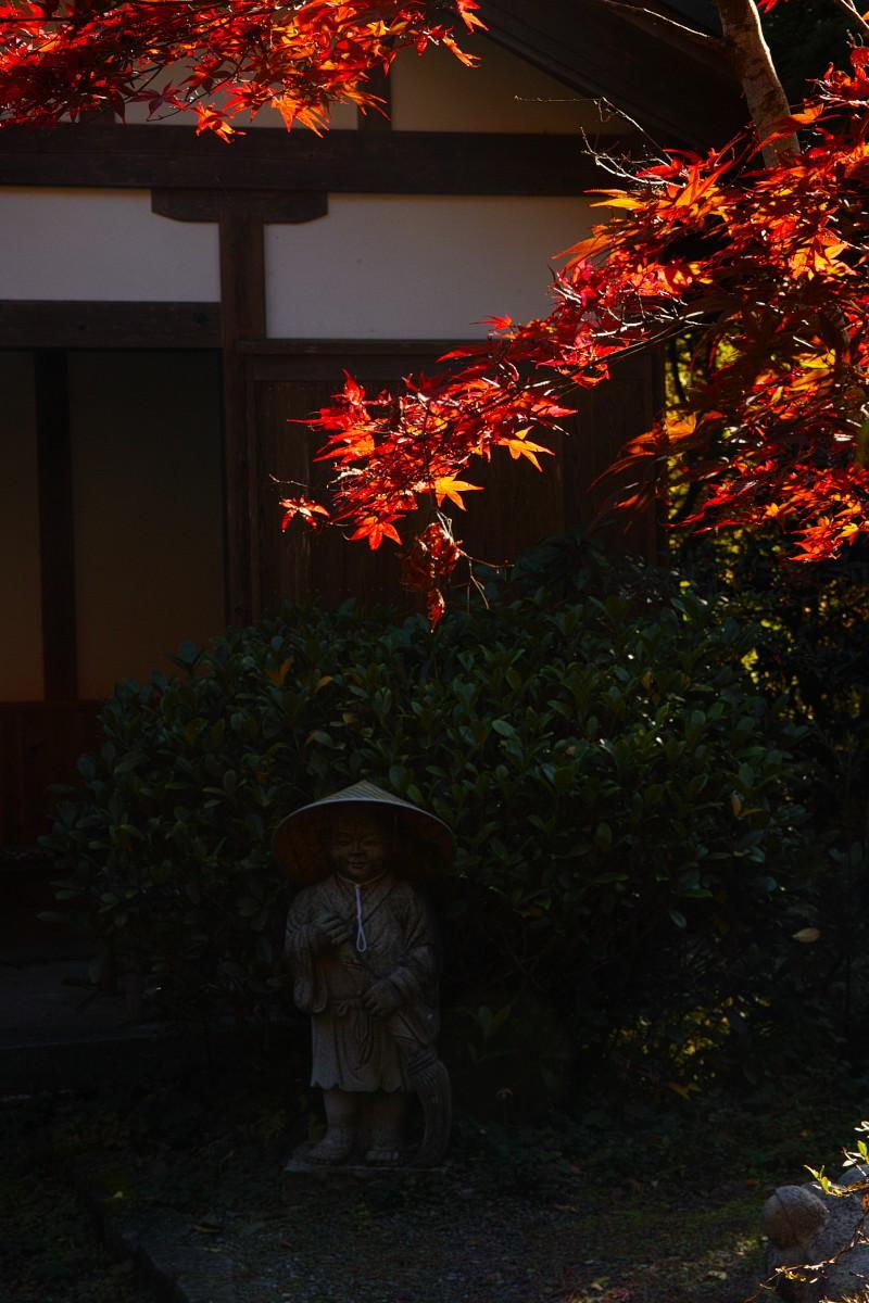 紅葉  2017   金蔵寺_f0021869_13404436.jpg