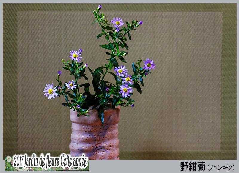 c0009981_05130269.jpg
