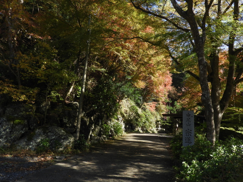 中川の里と宗蓮寺_e0048413_16332746.jpg