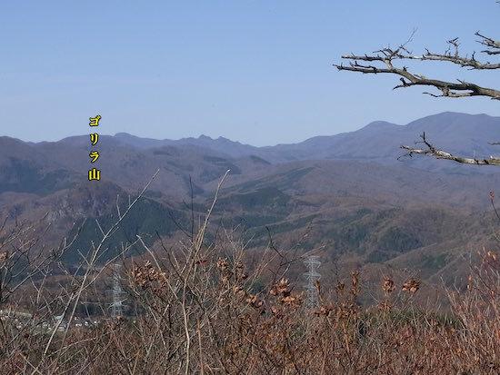山登りその6(5座目)戸神山 504m_c0063348_08164101.jpg