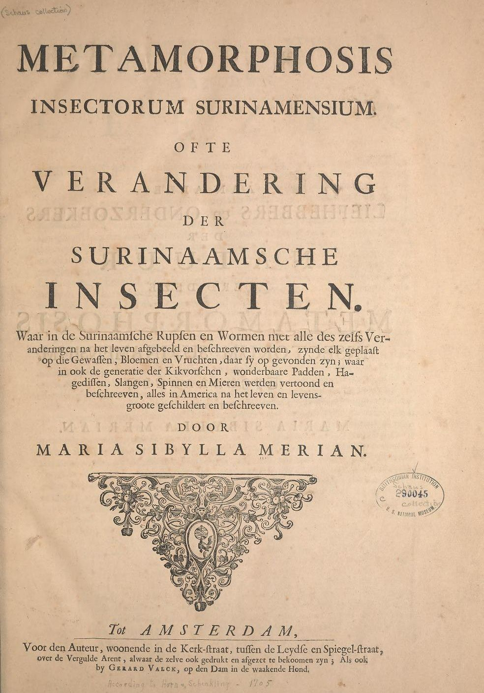300年前の女性昆虫学者の作品がオープンアクセスに_c0025115_22481909.jpg