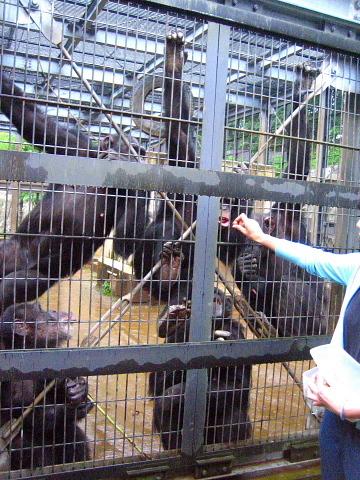 栄養士のための「おとなの動物園の楽しみ方」を開催して。_d0046025_09444556.jpg