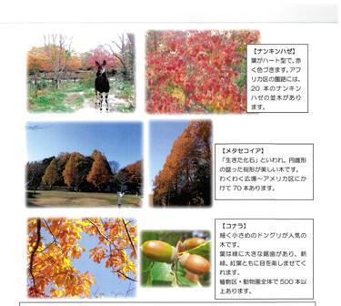 f0232136_13340061.jpg