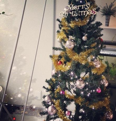 クリスマス装飾_f0172281_6561183.jpg