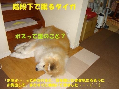f0121712_08594135.jpg