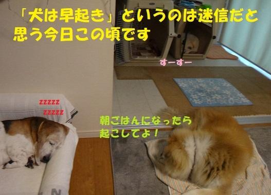 f0121712_09010008.jpg