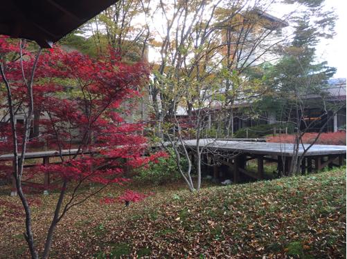楽しい秋の温泉プチ旅行♪5回目のゆと森倶楽部へ_f0207146_11070135.jpg