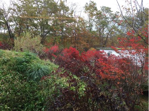 楽しい秋の温泉プチ旅行♪木もれび離れ館☆101_f0207146_11094001.jpg