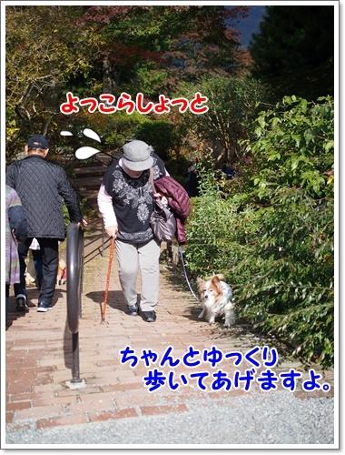 d0013149_00024014.jpg