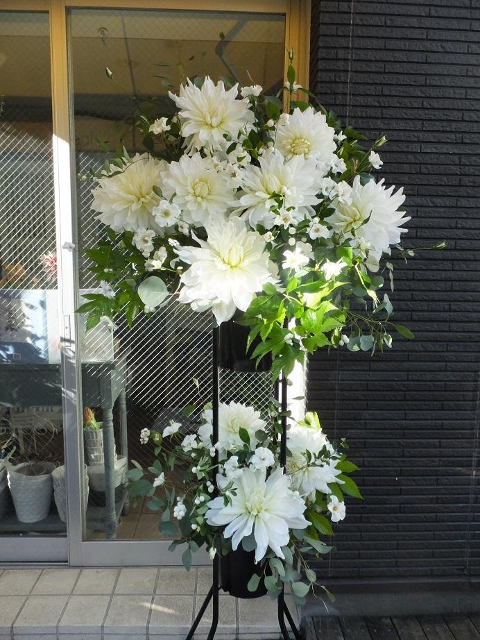 オークリーフ(白いダリアのスタンド装花)_f0049672_16532141.jpg