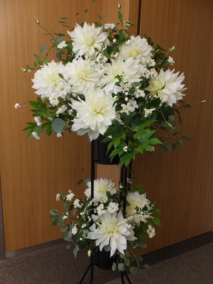 オークリーフ(白いダリアのスタンド装花)_f0049672_16532912.jpg