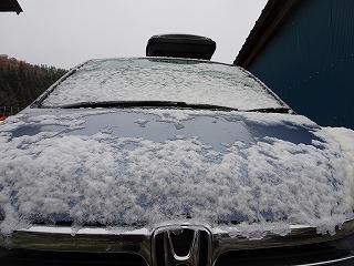初雪_d0122374_12401653.jpg