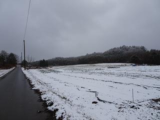 初雪_d0122374_12403196.jpg