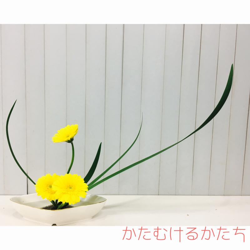 b0018281_20350987.jpg