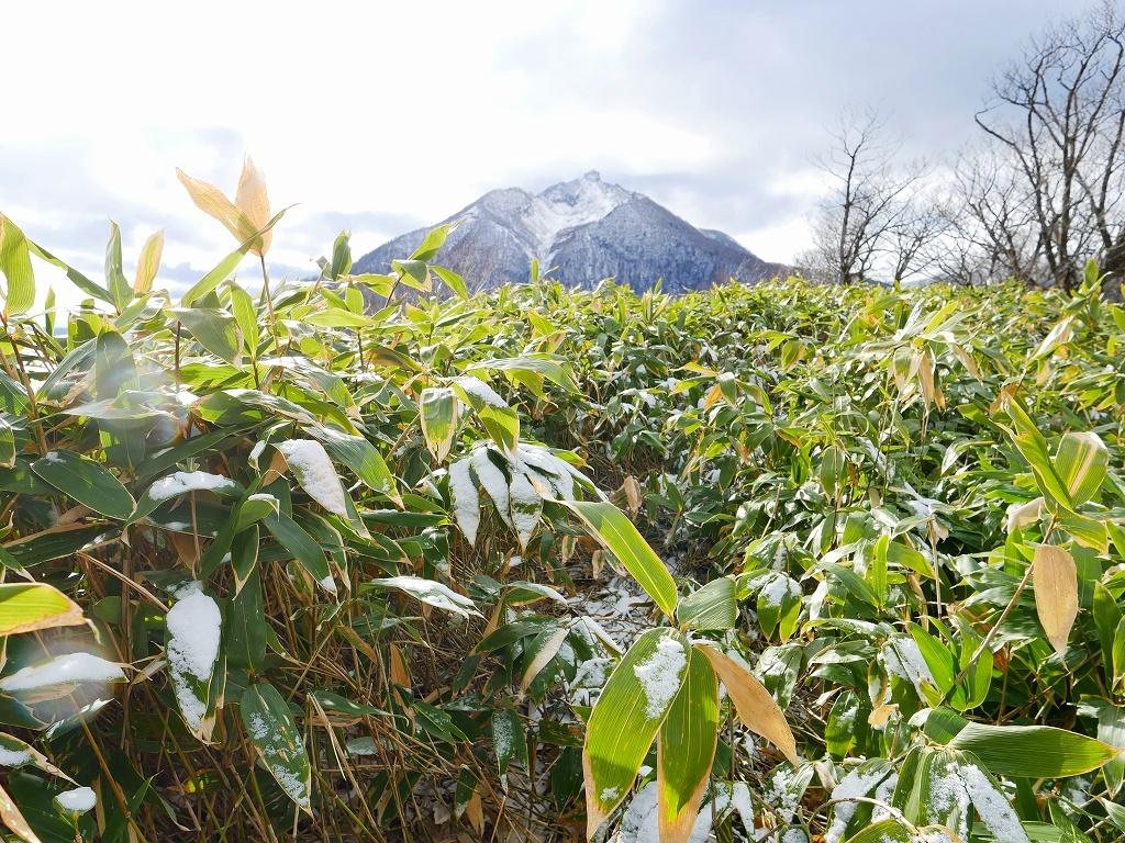 イチャンコッペ山と幌平山、2017.11.16_f0138096_18231675.jpg
