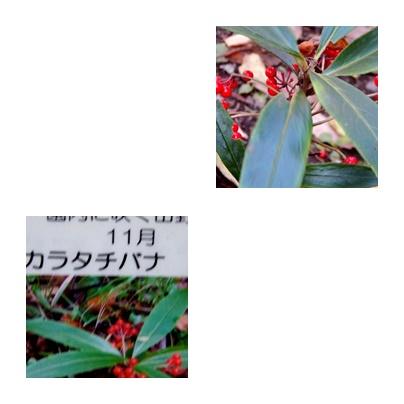 b0352112_13494578.jpg