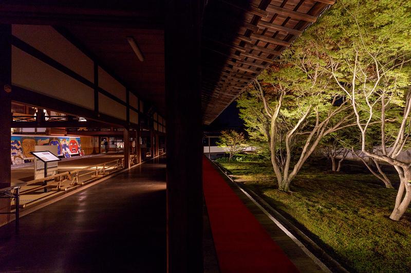 妙覚寺ライトアップ_f0155048_1615723.jpg