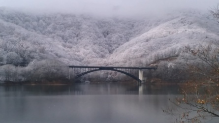 11月17日の釣果 - 桧原湖 森と川の声  もうひとつの故郷 森川荘