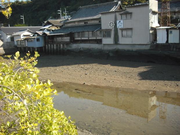 いつもの川へ (3)_d0359503_20495302.jpg