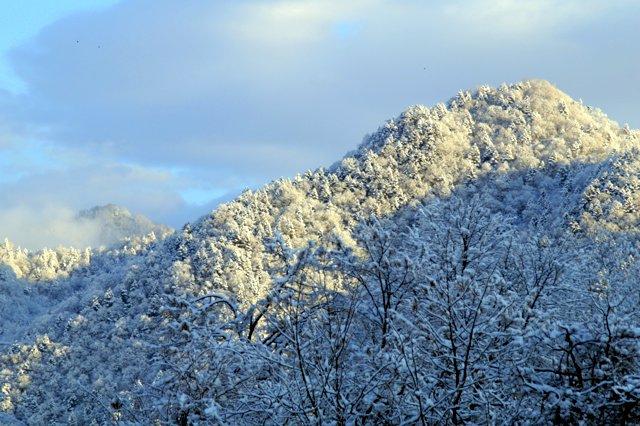 2017年11月16日(木)  雪景色を訪ねて(定山渓温泉周辺)_a0345007_103563.jpg