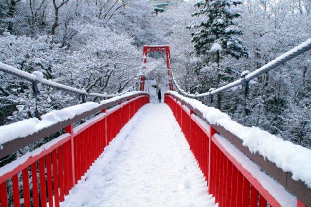 2017年11月16日(木)  雪景色を訪ねて(定山渓温泉周辺)_a0345007_1043159.jpg