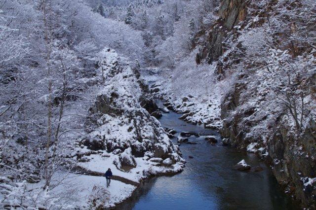2017年11月16日(木)  雪景色を訪ねて(定山渓温泉周辺)_a0345007_1055181.jpg
