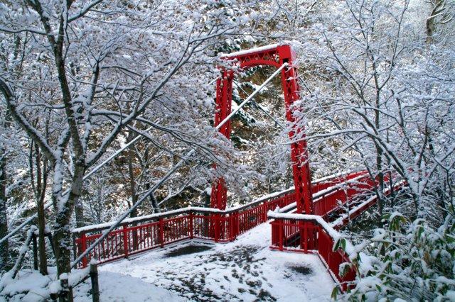 2017年11月16日(木)  雪景色を訪ねて(定山渓温泉周辺)_a0345007_1073855.jpg