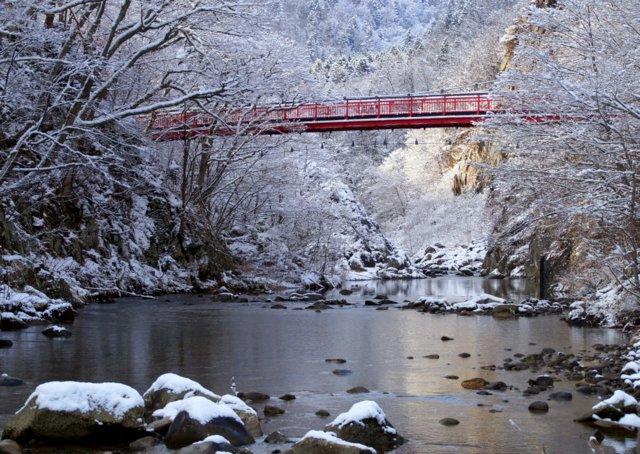 2017年11月16日(木)  雪景色を訪ねて(定山渓温泉周辺)_a0345007_1091122.jpg