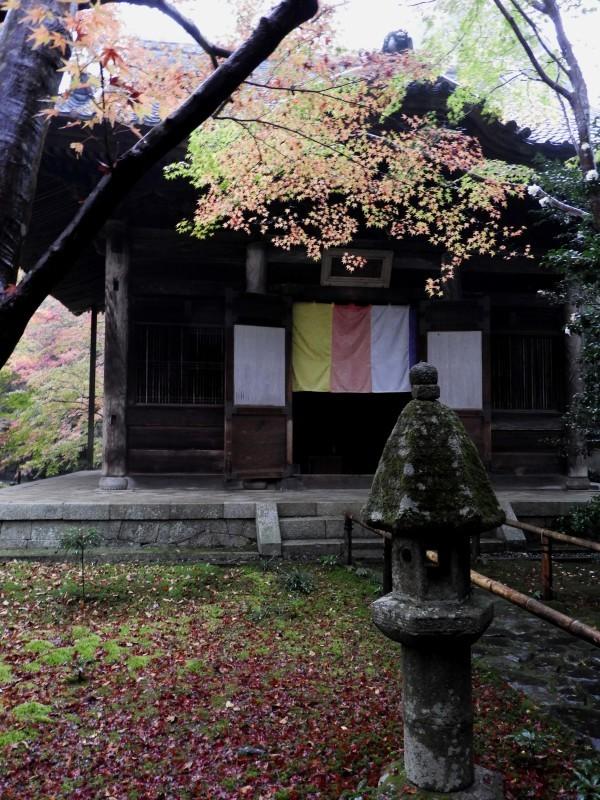 雨の蓮華寺_e0048413_13382899.jpg