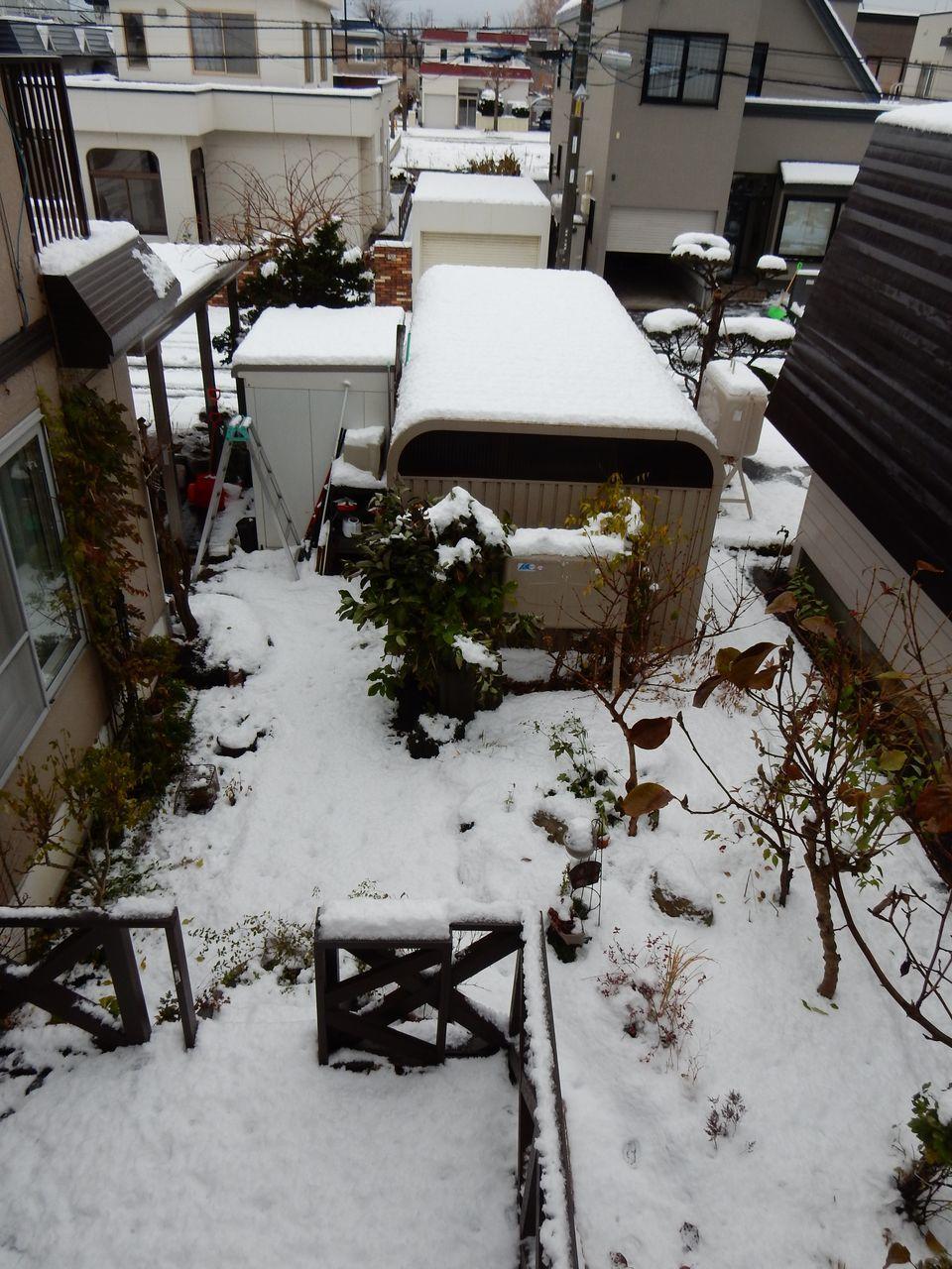 初の本格的積雪_c0025115_20440774.jpg
