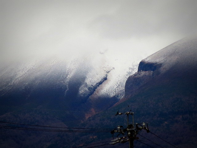Karunail/カルネル*初冬のネイル_f0236260_23215997.jpg