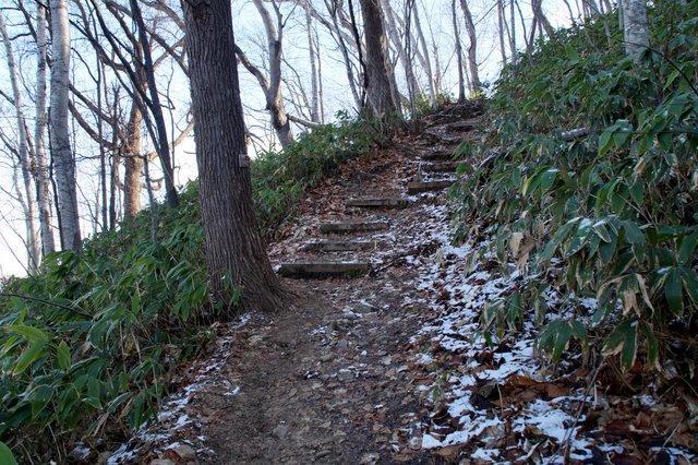 2017年11月17日(金)  藻岩山(標高531m)旭山公園コース_a0345007_13292186.jpg