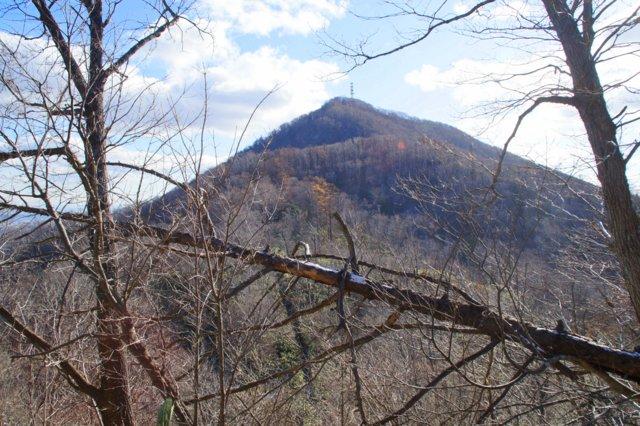 2017年11月17日(金)  藻岩山(標高531m)旭山公園コース_a0345007_1331406.jpg