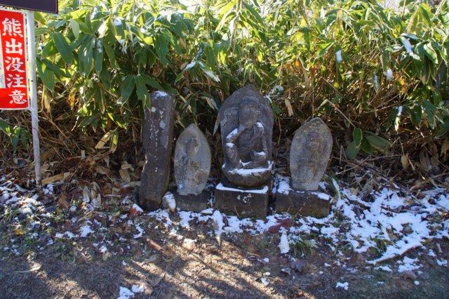 2017年11月17日(金)  藻岩山(標高531m)旭山公園コース_a0345007_13315769.jpg