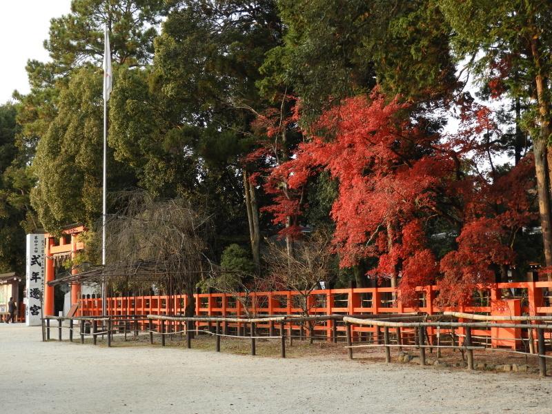 上賀茂神社 紅葉盛り_e0048413_21233805.jpg