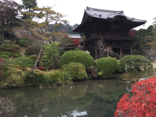 秋の高麗川 その2_c0331145_23161742.jpg