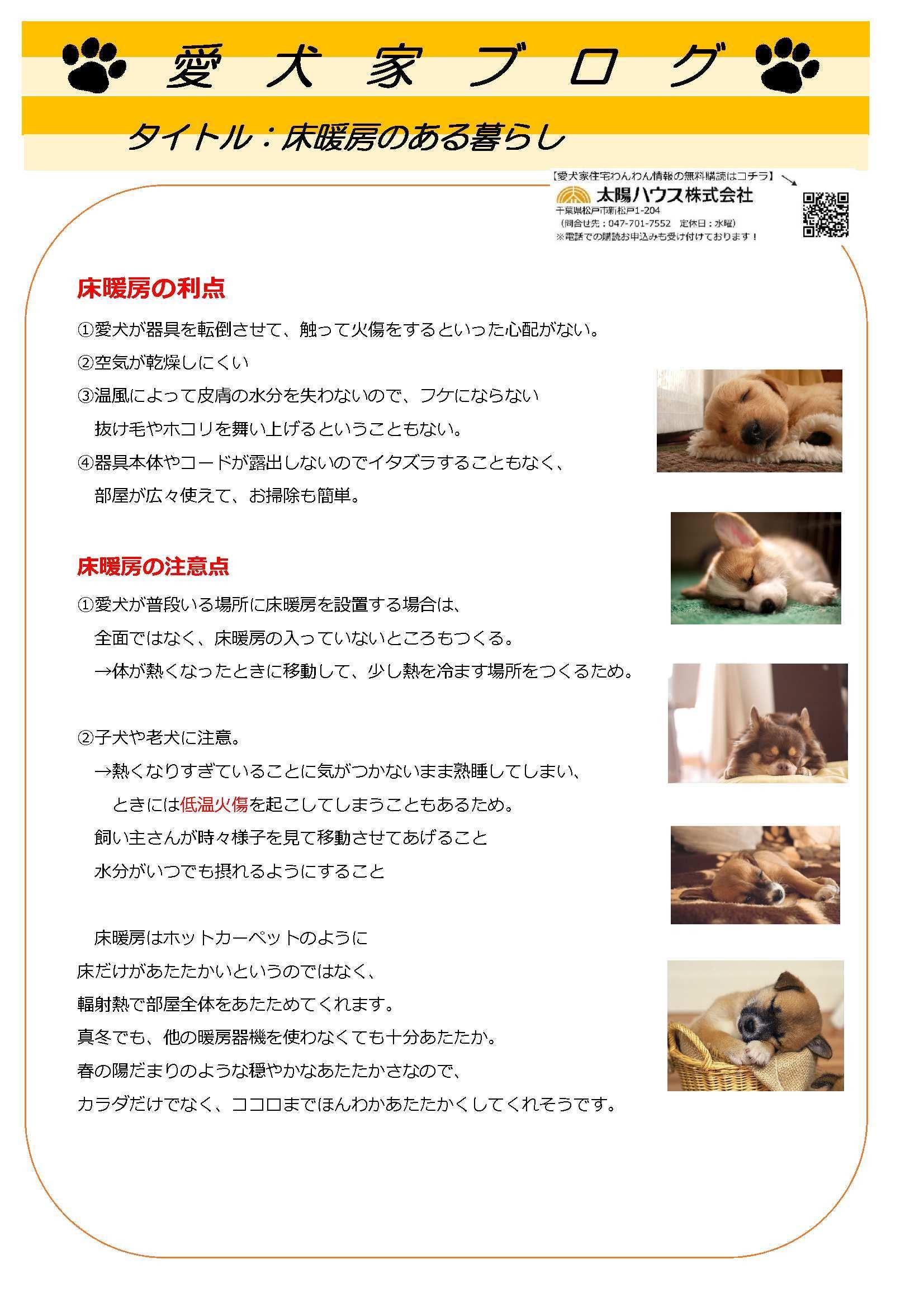 愛犬家住宅 太陽ハウス 松戸_c0064859_18433584.jpg