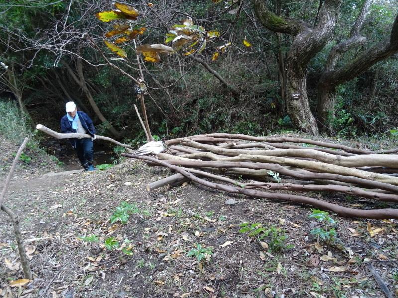 伐採木整理&リース材料採収・・・うみべの森_c0108460_17370121.jpg