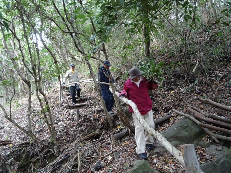伐採木整理&リース材料採収・・・うみべの森_c0108460_17370468.jpg
