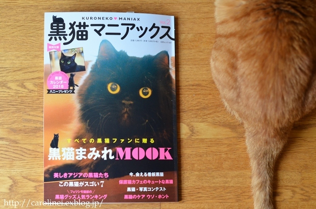 "黒猫マニアックス vol.2 に、Lauraの黒猫スイーツ Laura\'s Cat-shaped Sweets on ""Kuroneko Maniax vol.2\""_d0025294_18233787.jpg"