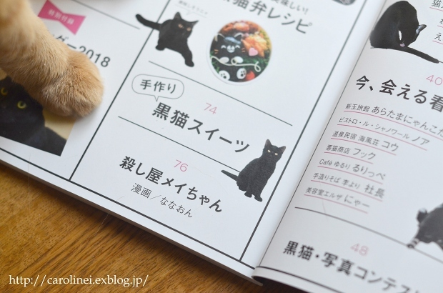 "黒猫マニアックス vol.2 に、Lauraの黒猫スイーツ Laura\'s Cat-shaped Sweets on ""Kuroneko Maniax vol.2\""_d0025294_18235649.jpg"
