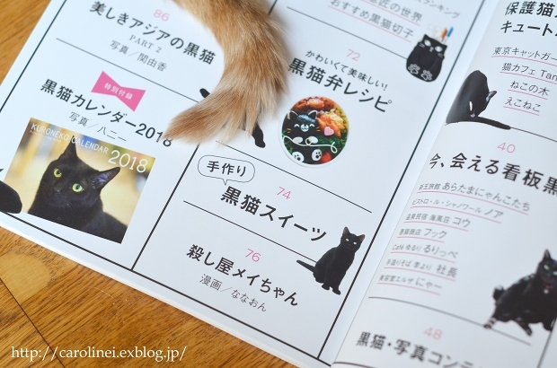"黒猫マニアックス vol.2 に、Lauraの黒猫スイーツ Laura\'s Cat-shaped Sweets on ""Kuroneko Maniax vol.2\""_d0025294_18240724.jpg"