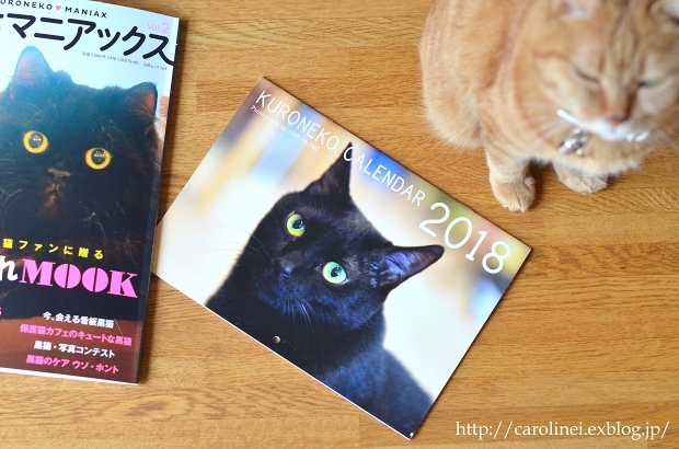 "黒猫マニアックス vol.2 に、Lauraの黒猫スイーツ Laura\'s Cat-shaped Sweets on ""Kuroneko Maniax vol.2\""_d0025294_18251413.jpg"