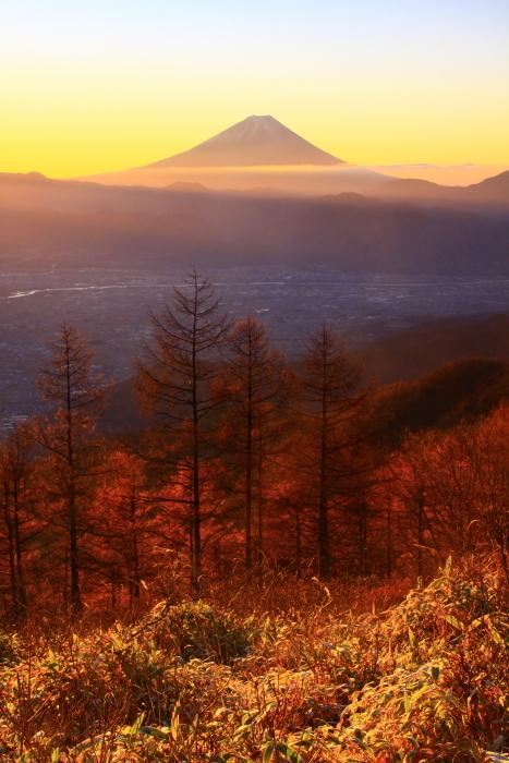 29年11月の富士(17)甘利山の富士_e0344396_23035123.jpg