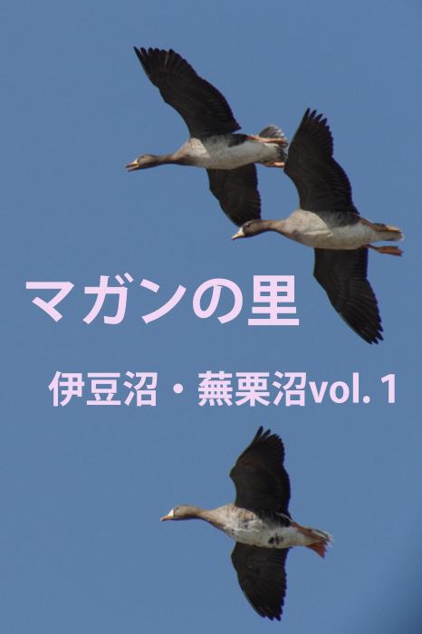b0144049_20591139.jpg