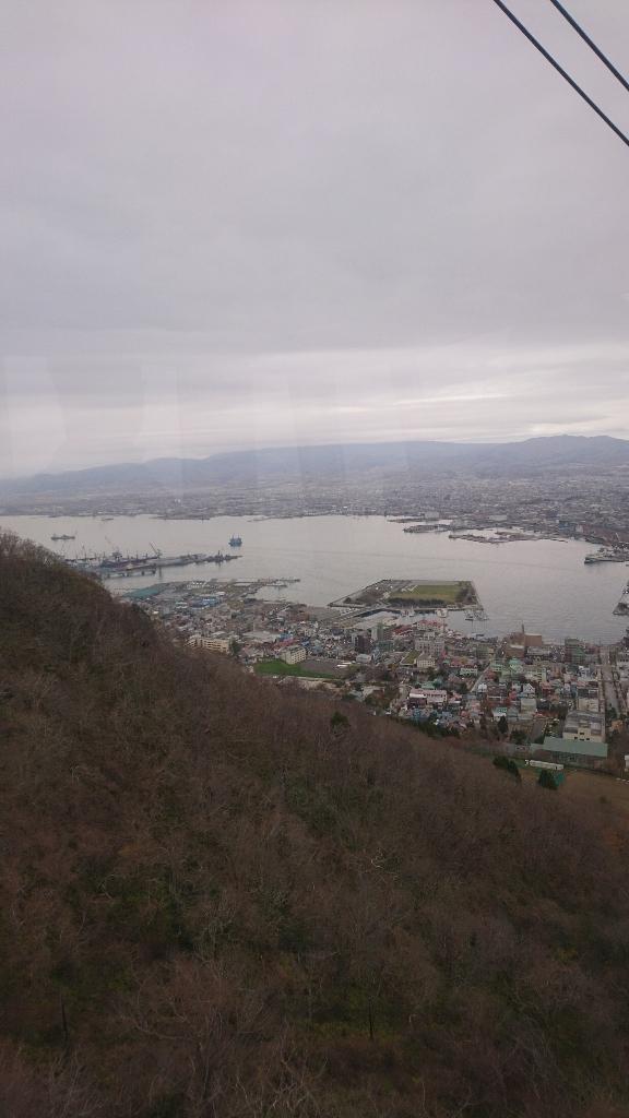 函館山からの夜景_b0106766_16124490.jpg