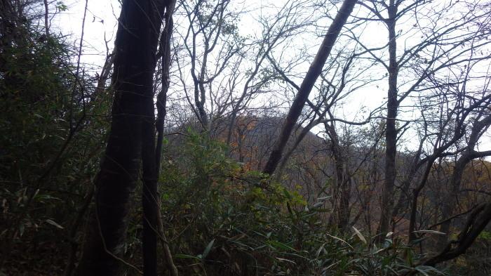 青麻山(34回目)とあけら山に登る ~ 2017年11月18日_f0170180_23372443.jpg